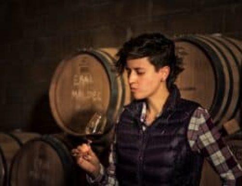 Mujeres en el vino mexicano, talento que mueve una industria